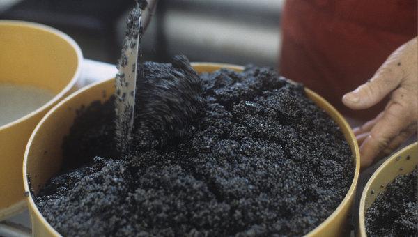 Как посолить черную икру в домашних условиях